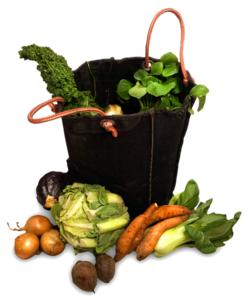 Lekkernassuh groentepakket